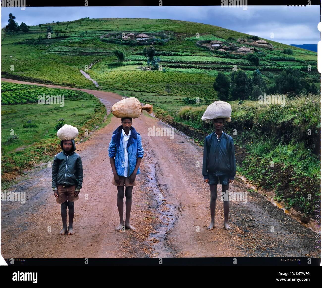 Burundi, Bujumbura Provinz, Ijenda, Ijenda Rugos auf Hügeln, die das Dorf Struktur ist eine koloniale Ansaug- und Burundier (die überwiegende Mehrheit der Arbeitskräfte sind in der Landwirtschaft) bis vor kurzem in einer Familie namens rugo in der Regel installiert auf halber Höhe rund um die Hügel und in der Mitte des Eigentums lebte, es eignet sich für die Zucht mit ein Platz für Tiere und Fechten nicht nur als Schutz sondern auch für die Familie Zusammenhalt und Park Tiere für die Nacht (4 x 5 Umkehr film Reproduktion) Stockbild