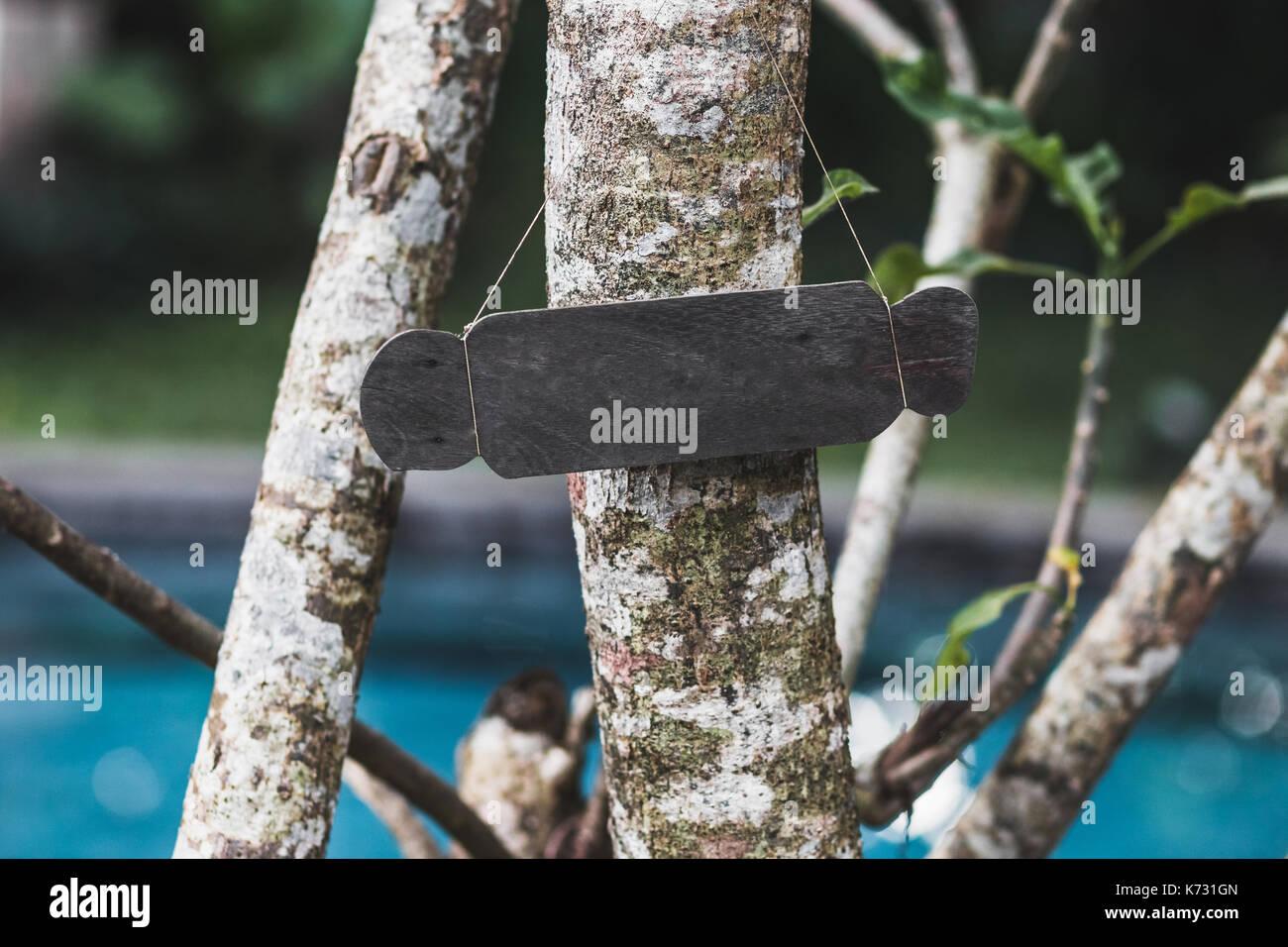 Leere Holz- Typenschild auf Baum. Vintage strukturierte Stil und ...