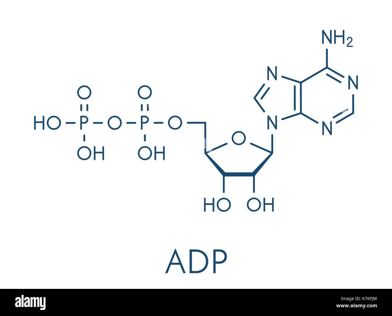 adenosin stockfotos adenosin bilder alamy. Black Bedroom Furniture Sets. Home Design Ideas