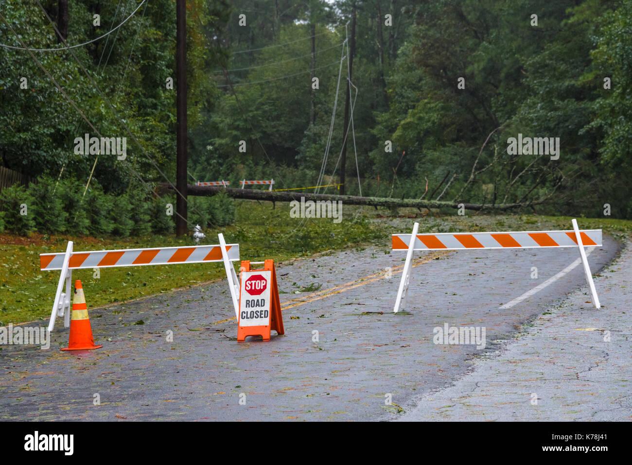 Tropischer Sturm Winde vom Hurrikan Irma brachte umfangreiche Baum- und niedergeworfene Stromleitungen in Atlanta, Georgia. (USA) Stockbild