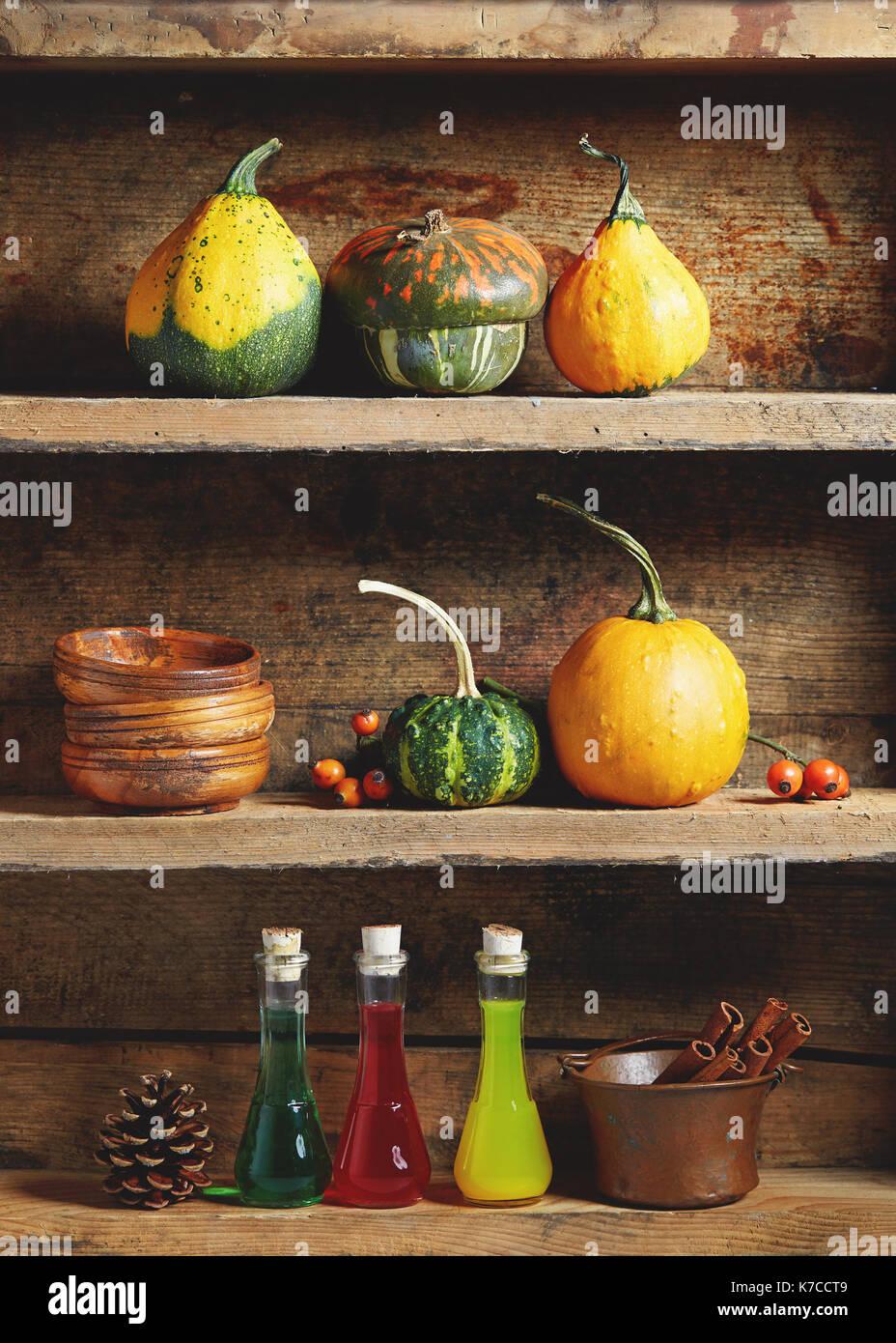 Herbst Arrangement: Verschiedene Arten von dekorativen und essbaren Kürbisse mit Zaubertrank Flaschen andbowls auf alten Holzregal. Stockbild