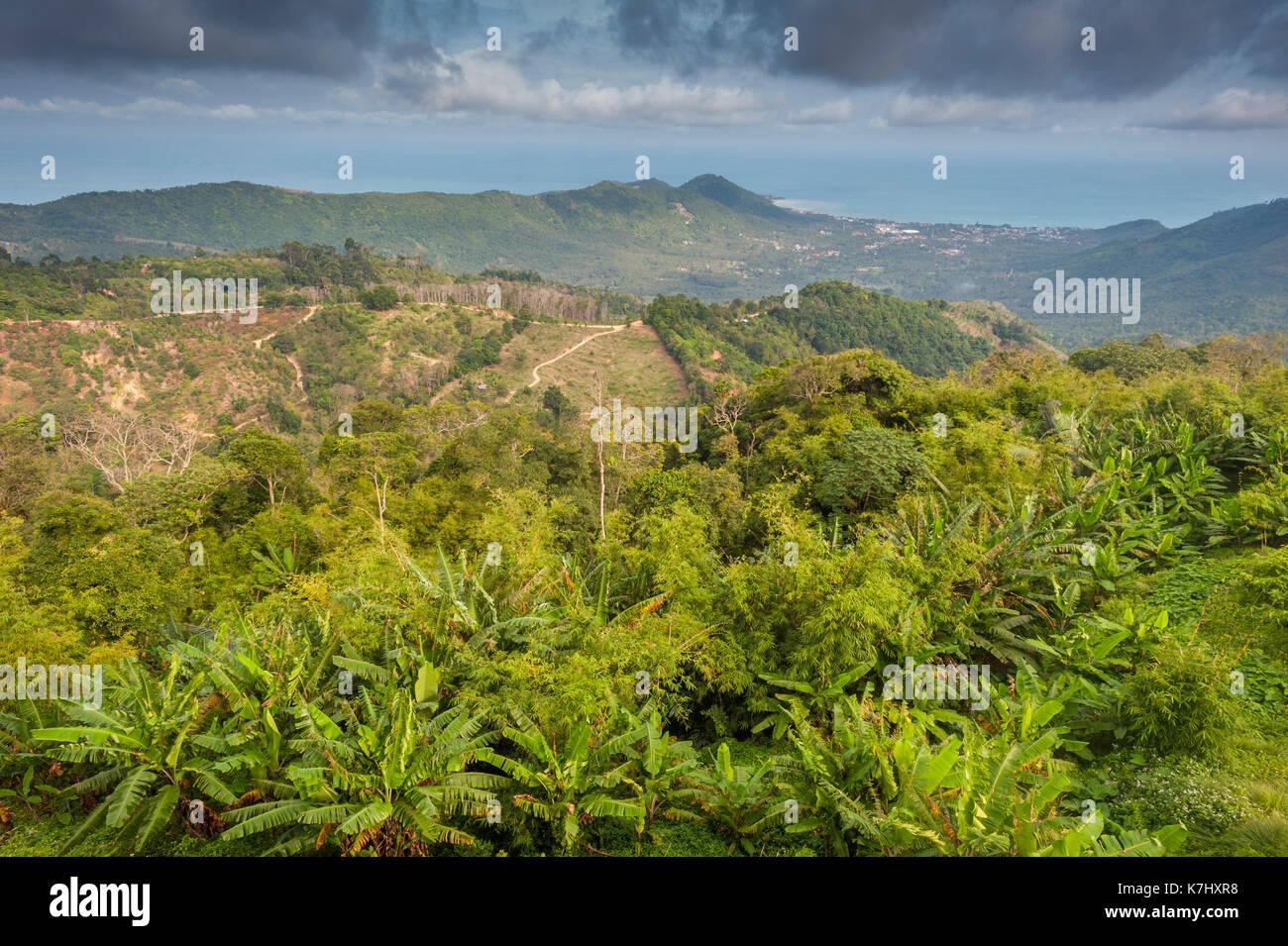 Blick auf die Insel Koh Samui, Thailand. Stockbild