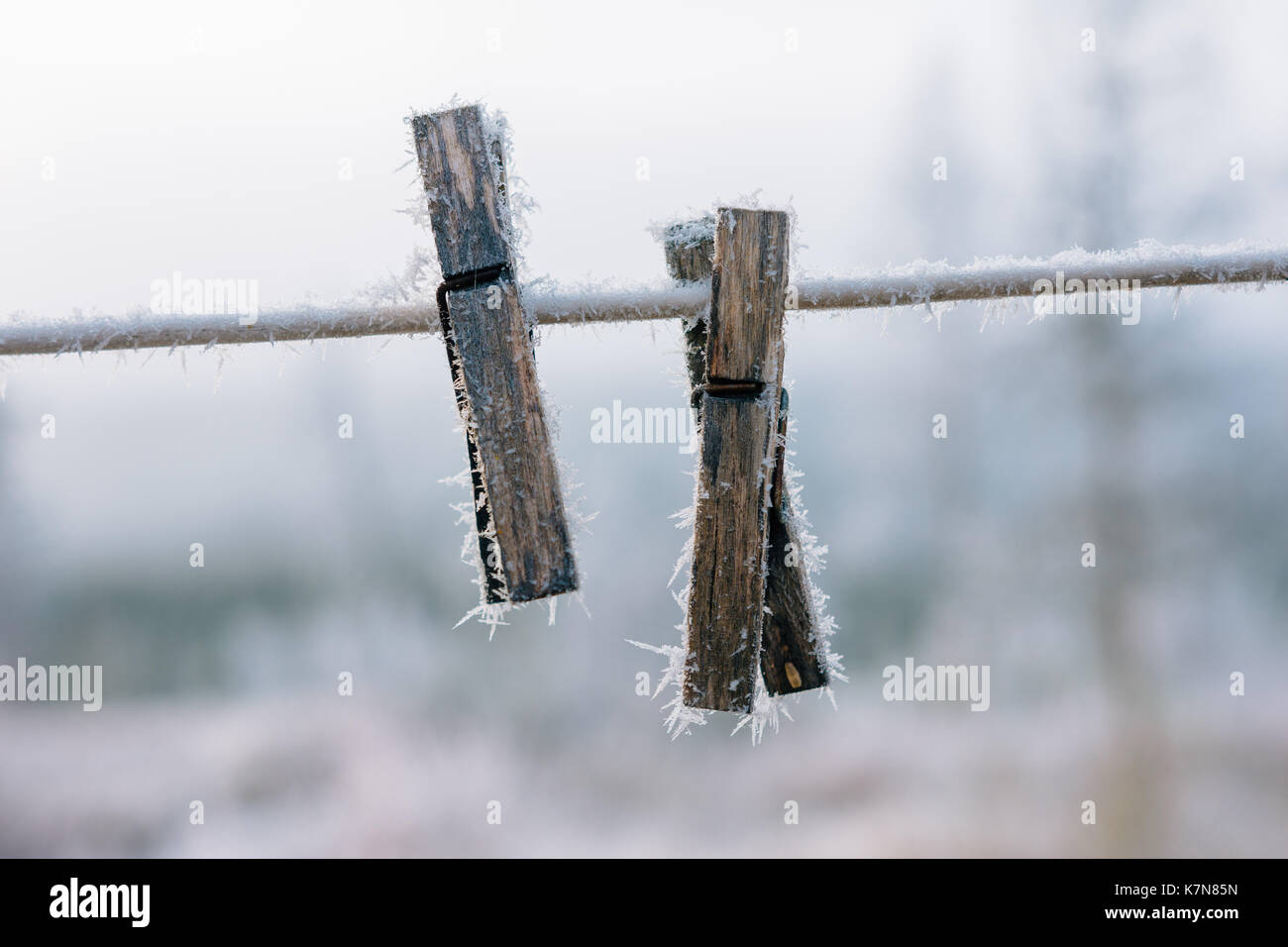 Zwei Wäscheklammern mit Frost im Freien auf einer Linie abgedeckt Stockbild