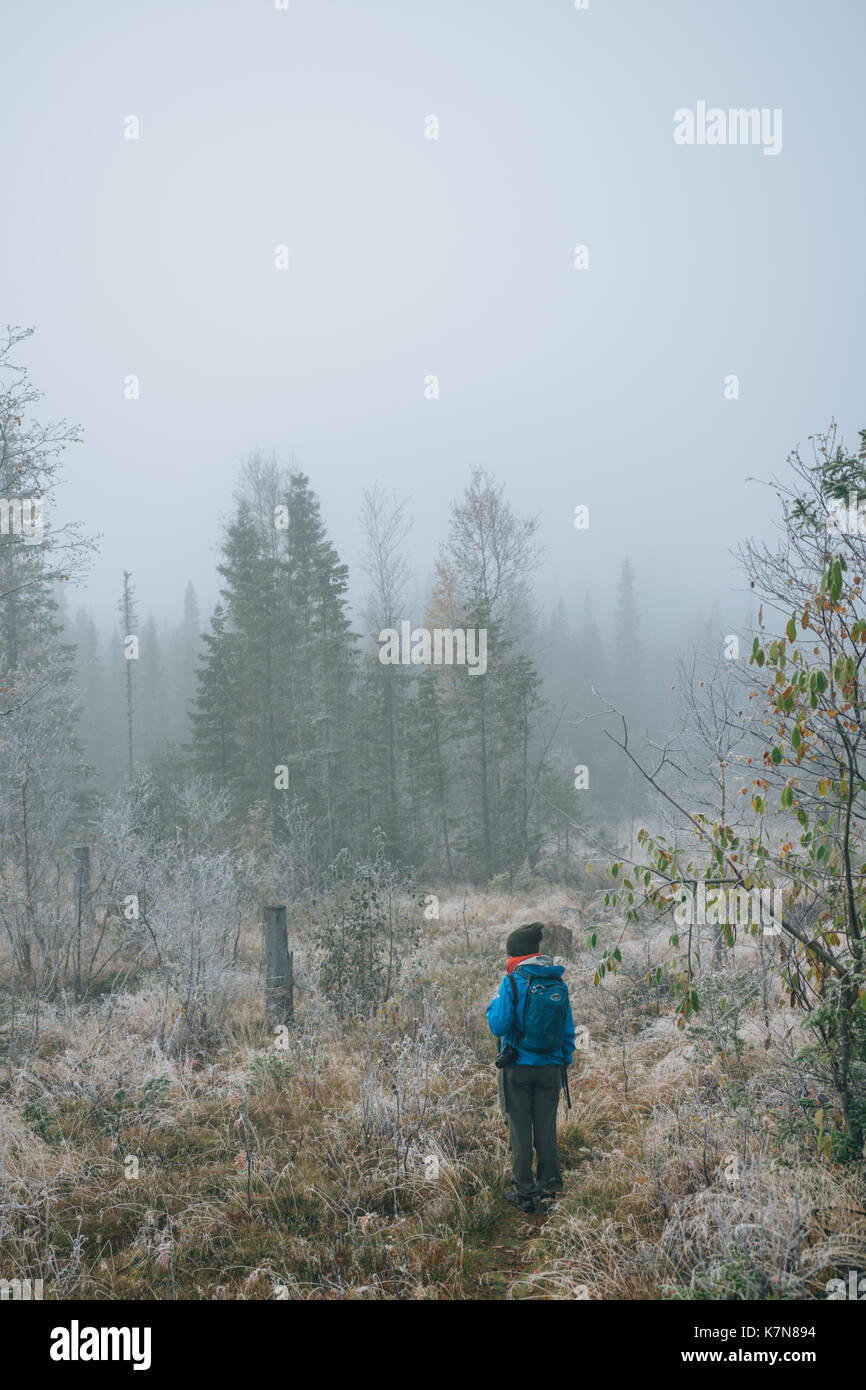 Junge Frau wandern in Wald mit Rucksack Stockbild