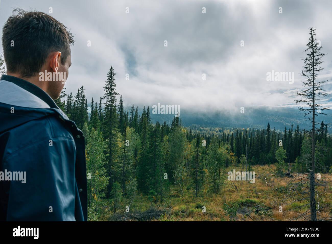 Junger Mann, um den Wald auf der Suche Stockbild