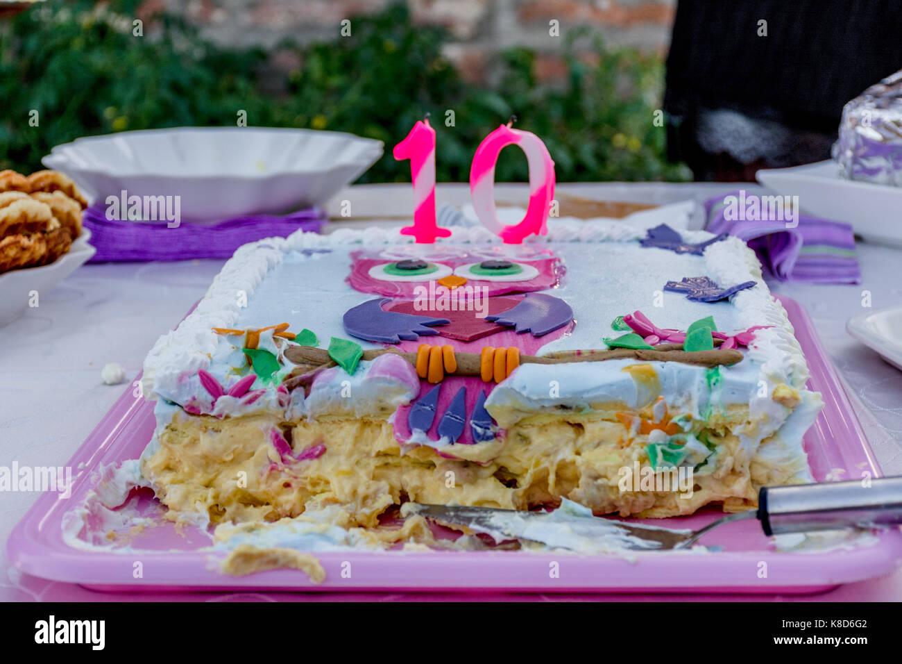 Geburtstag Kuchen Fur 10 Jahrige Madchen Stockfoto Bild 160101090