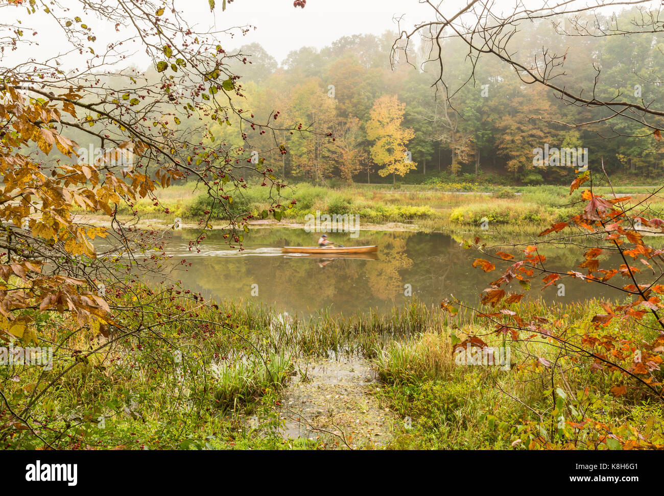 Ein nebeliger Morgen entlang der östlichen Zweig der Osten Zweig des Delaware River in Halcottsville, NY. Stockbild