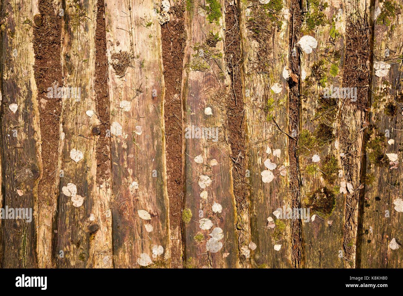 Fußboden Aus Alten Ziegeln ~ Schöne alte fußboden aus holz. der boden liegt zwischen der schaufel