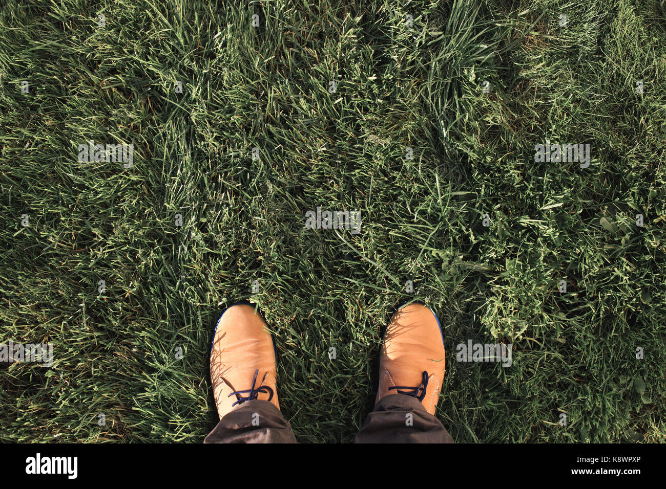 Beige Wildleder Stiefel auf grünem Gras. Ansicht von oben, flach Stockbild