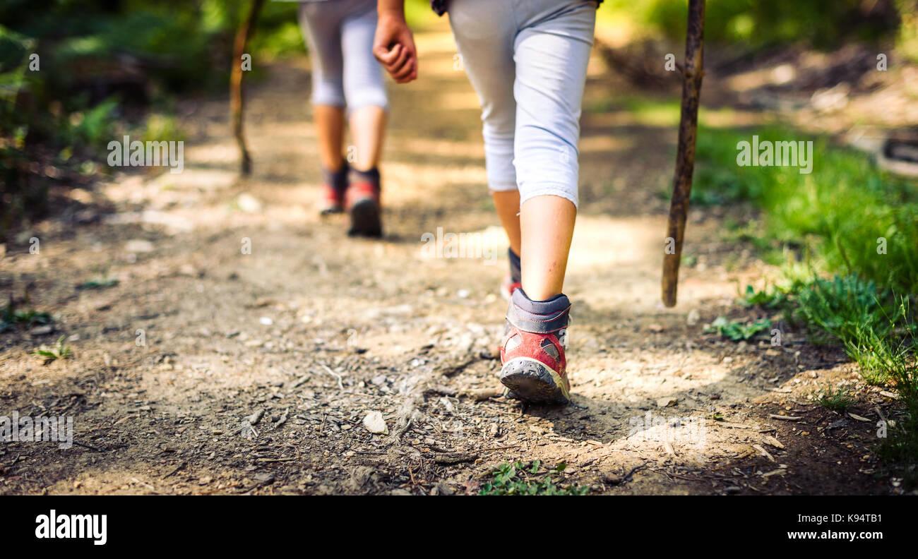 Kinder Wandern in den Bergen oder den Wald mit Sport wandern