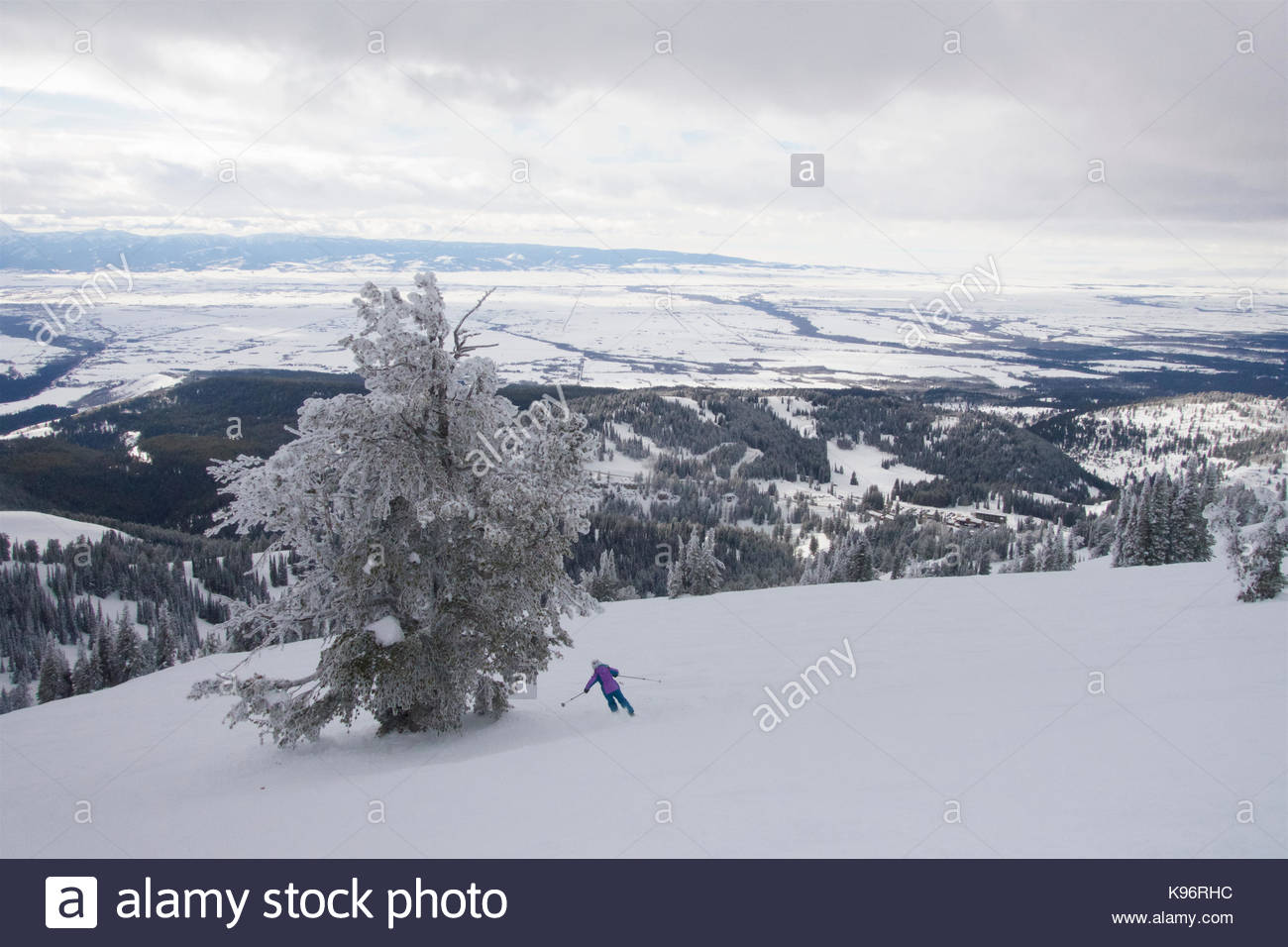 Ein jugendlich Mädchen Skifahren in der Nähe von Rauhreif bedeckt Bäume an einem bewölkten Tag. Stockbild