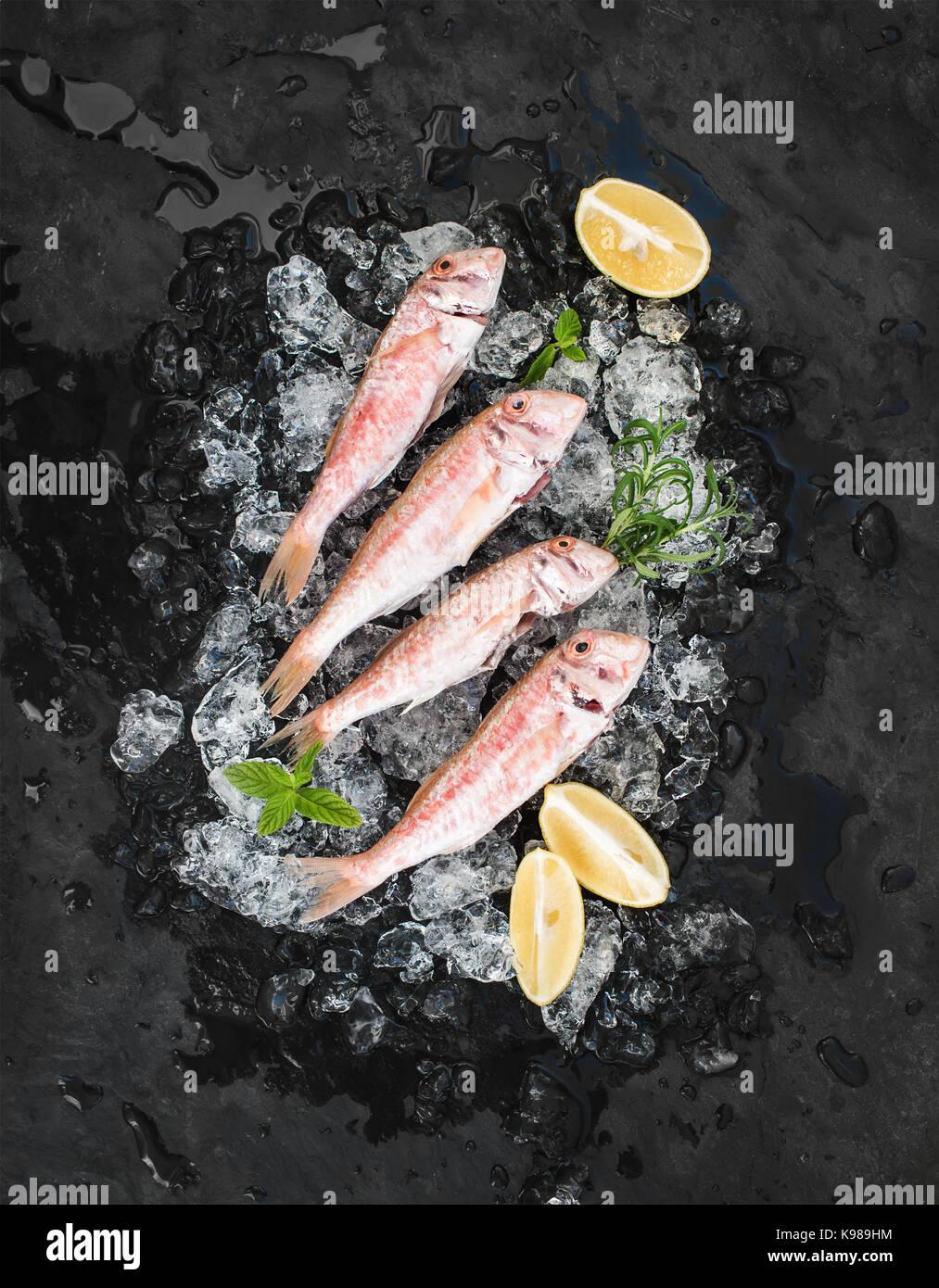 Rohe Rote Meerbarbe Fisch mit Zitrone, Minze und Rosmarin auf abgeplatzte Eis über dunklen Stein Hintergrund Stockbild