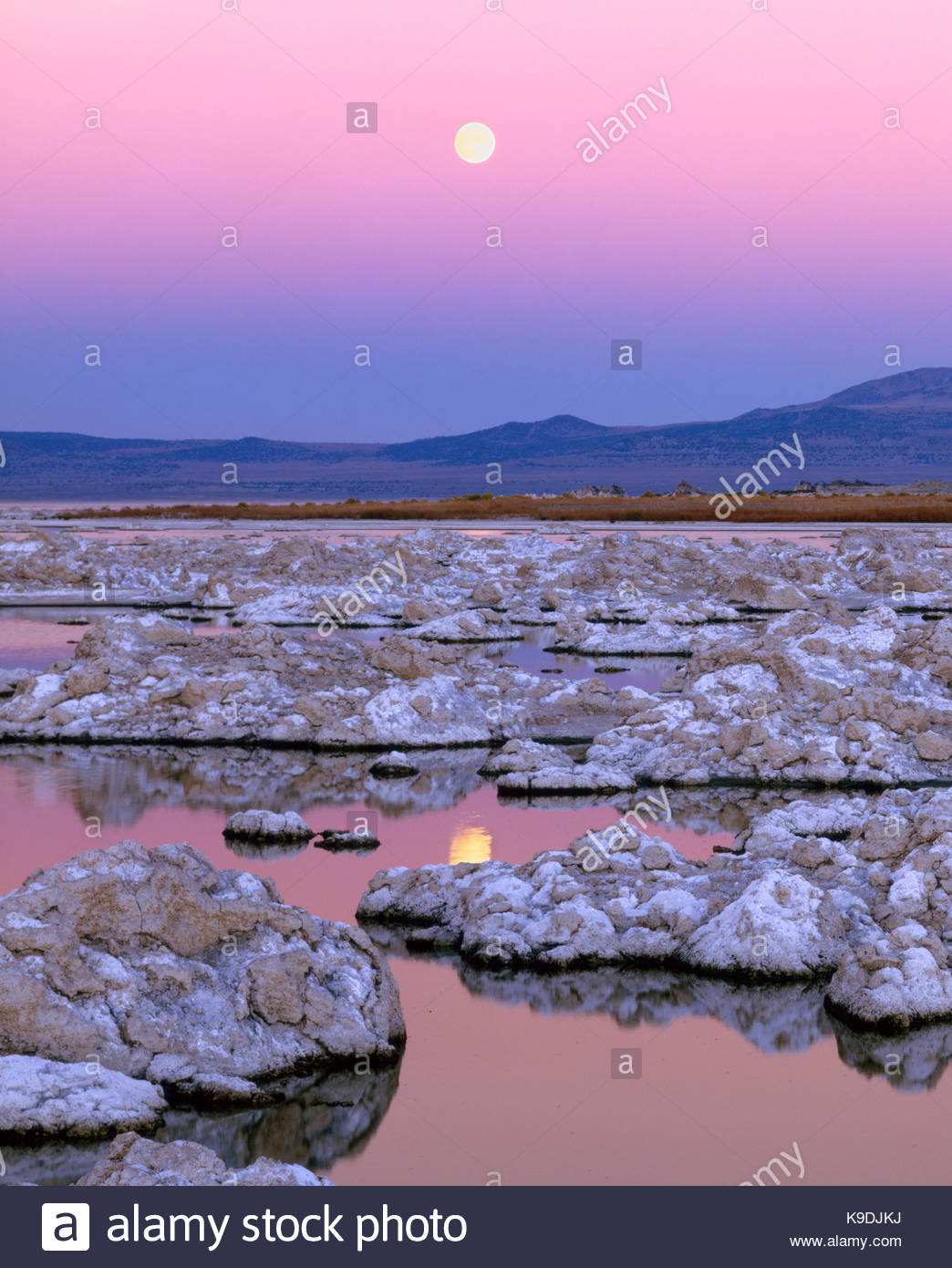 Steigende Moonover Mono Lake, Mono Basin National Forest Scenic Area, CA Stockbild