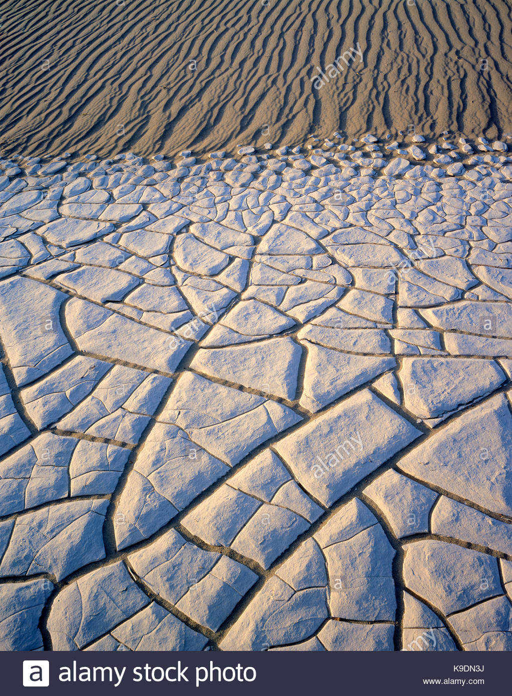 Playa Muster innerhalb von Sanddünen, Death Valley National Park, Kalifornien Stockbild