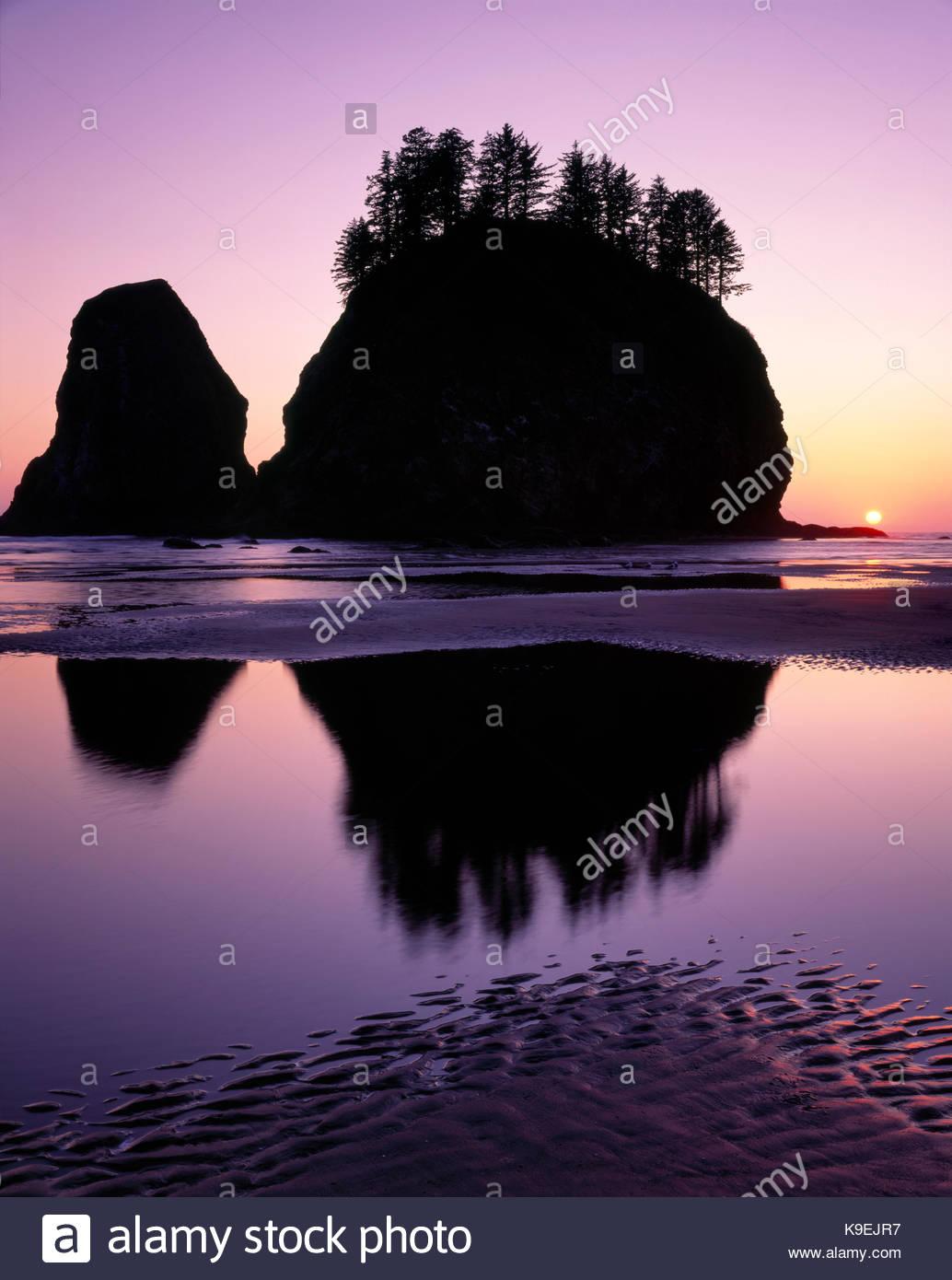 Schreiende Dame Rock und der Sonnenuntergang am zweiten Strand, Olympic National Park, Washington Stockbild