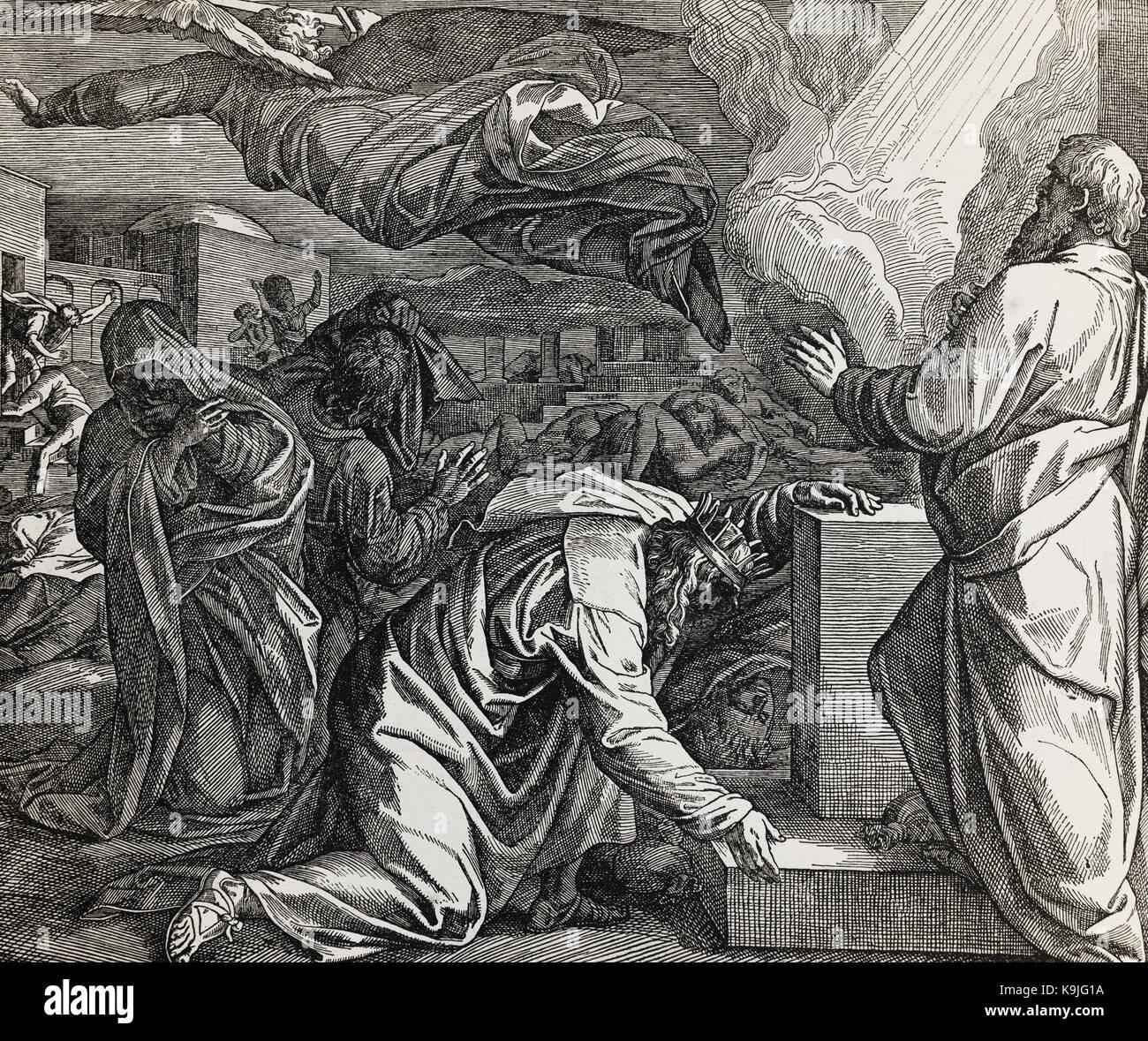 Die Lymphorgane Des Menschen: Der König David Und Die Zählung Der Menschen, Grafik