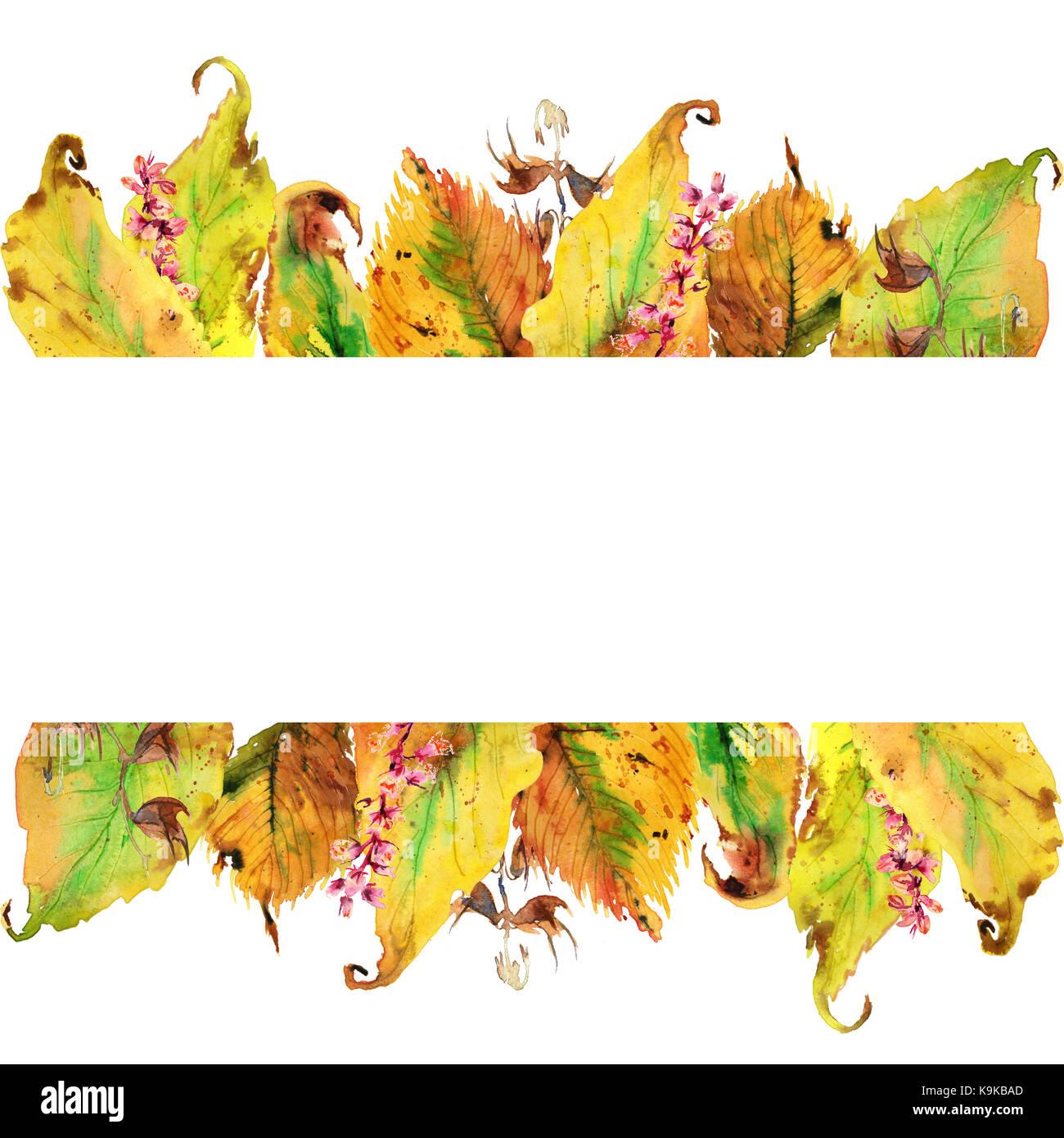 Sammlung Von Hand Zeichnen Aquarell Gelben Blatter Im Herbst