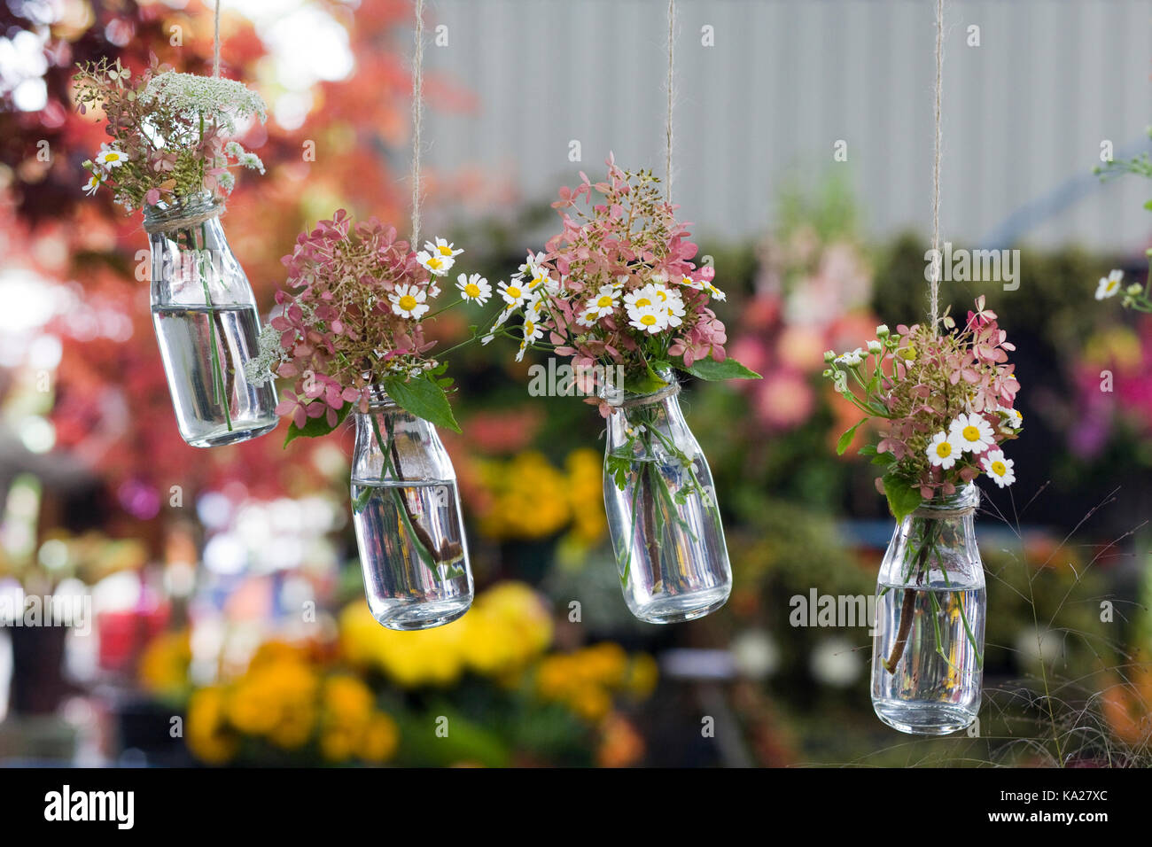 blumen in flaschen h ngende dekoration stockfoto bild 161090004 alamy. Black Bedroom Furniture Sets. Home Design Ideas