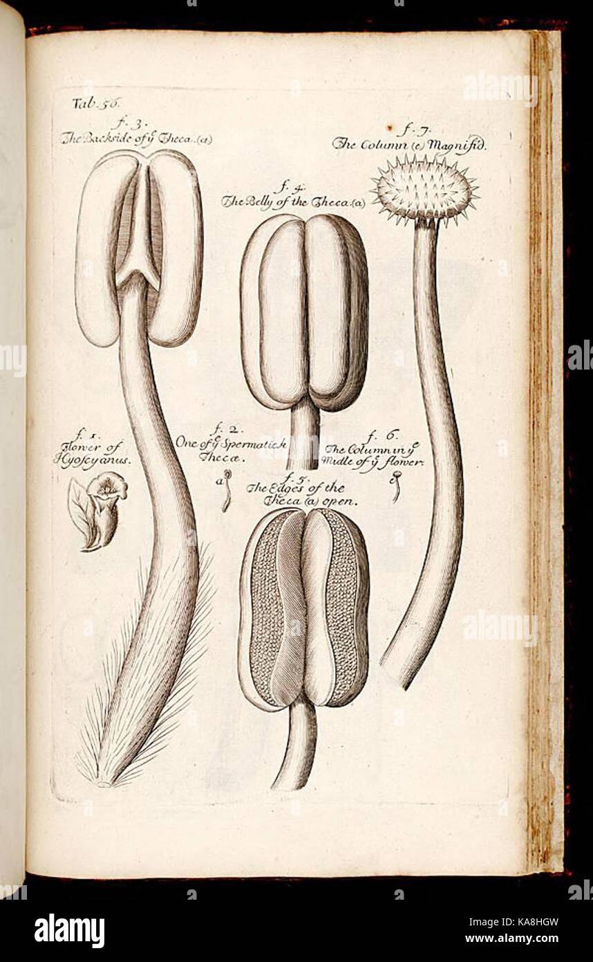 Ziemlich Die Anatomie Eines Fotos - Anatomie Ideen - finotti.info