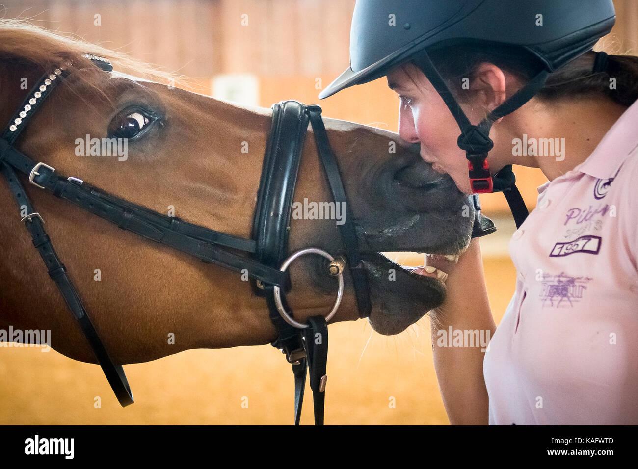 Warmblut. Reiter Lisa Mueller Glättung mit Kastanie Pferd. Deutschland Stockfoto
