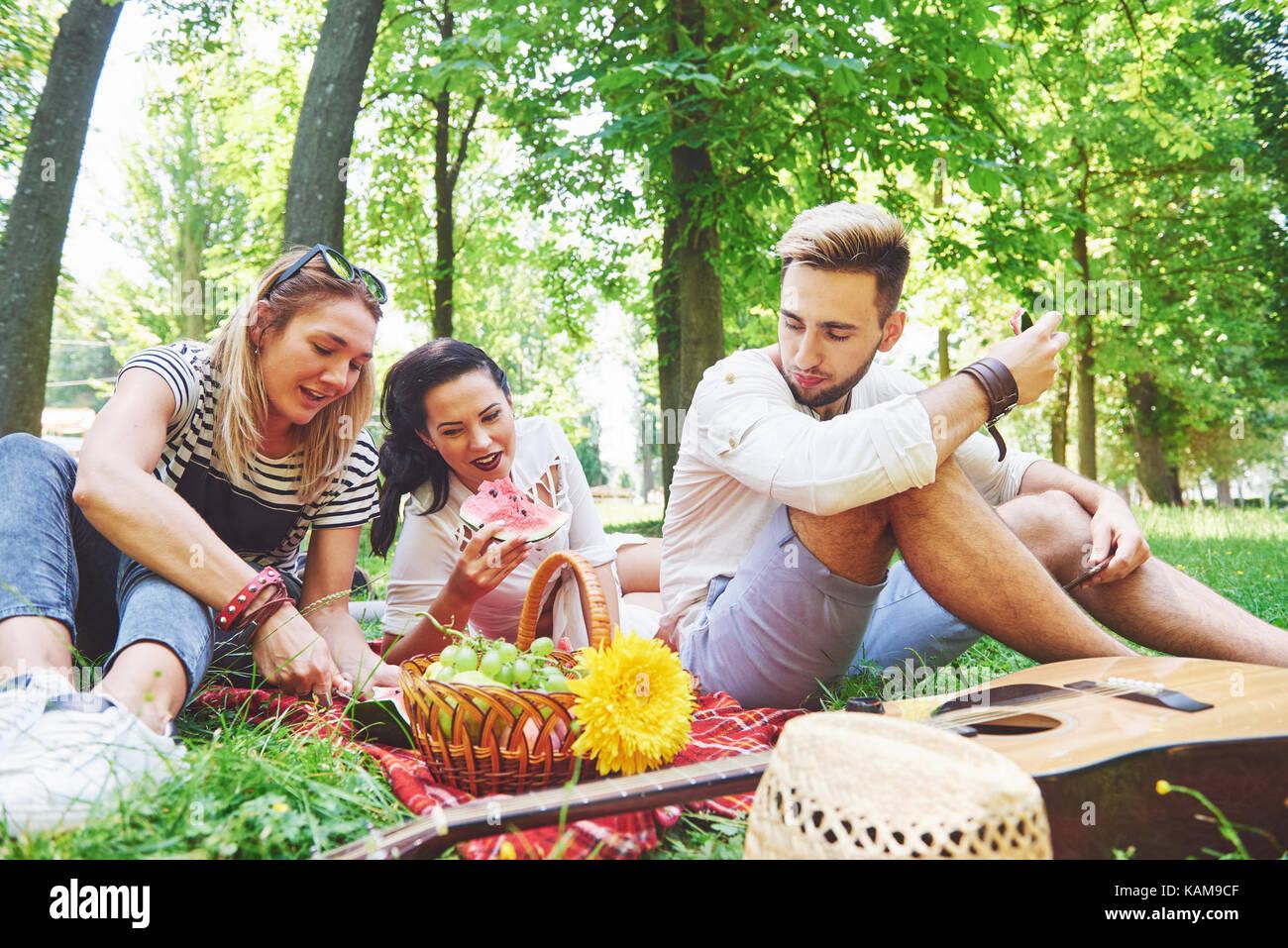 Gruppe von Freunden mit Picknick in einem Park an einem sonnigen Tag - Leute rumhängen, Spaß, Grillen Stockbild