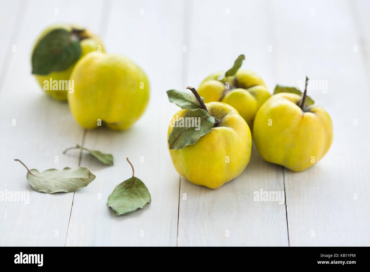 Fütterung, Verkauf, fallen Konzept. wenige helle Früchte Quitte Baum auf dem Tisch liegen mit schneebedeckten Stockbild