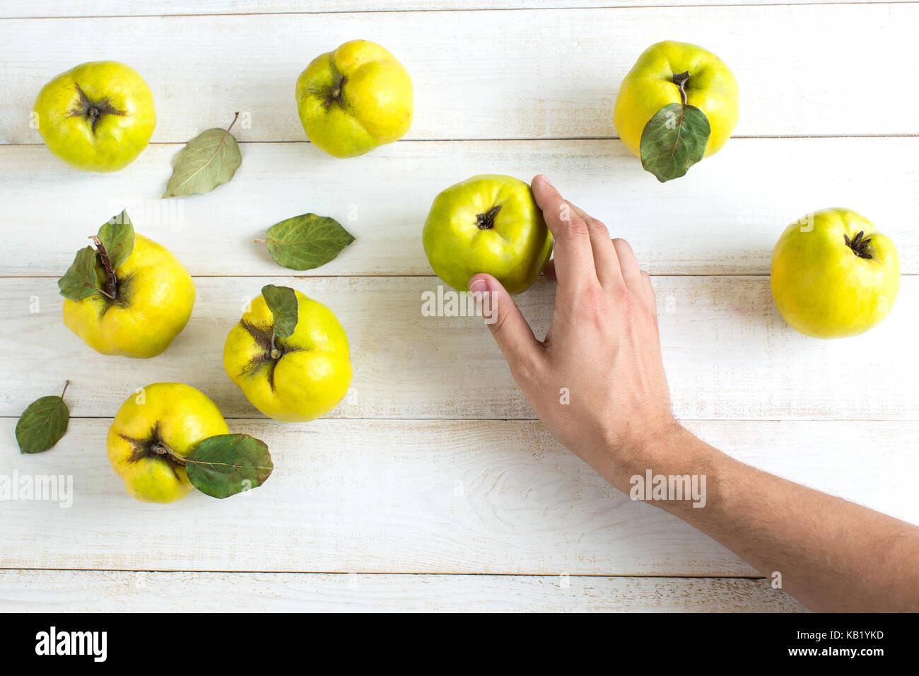 Ernte, Herbst, Unterhaltung Konzept. zarte Hand der kaukasischen Menschen berühren Gelb grüne Früchte, Stockbild