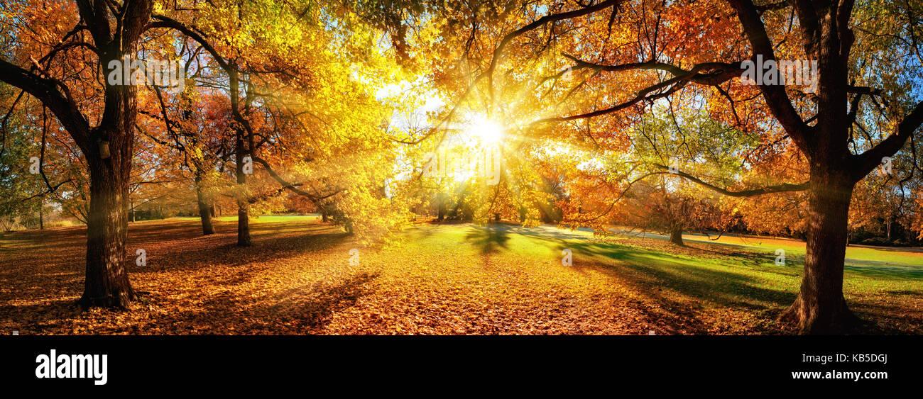 Herbstlandschaft Sonne