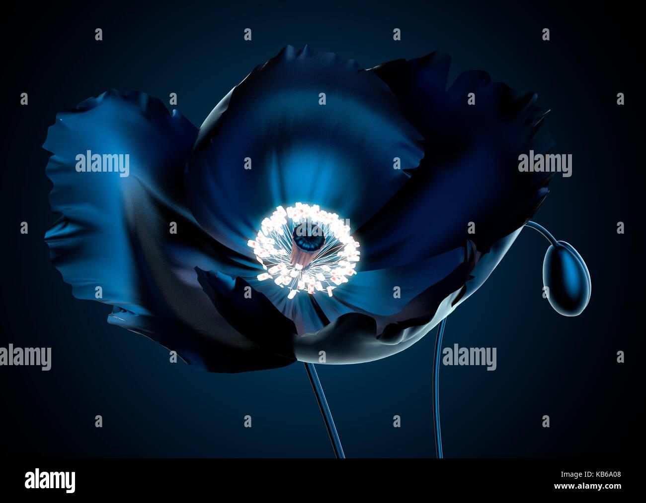 Mohn mit Strahlen Staubblatt, dass die Blume aufleuchten, die 3D-Darstellung Stockbild