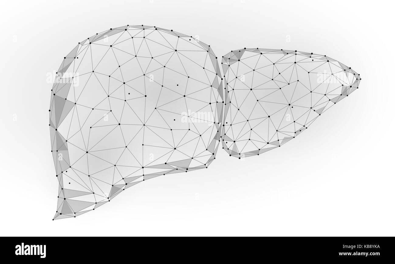Organ Body Part Stockfotos & Organ Body Part Bilder - Alamy
