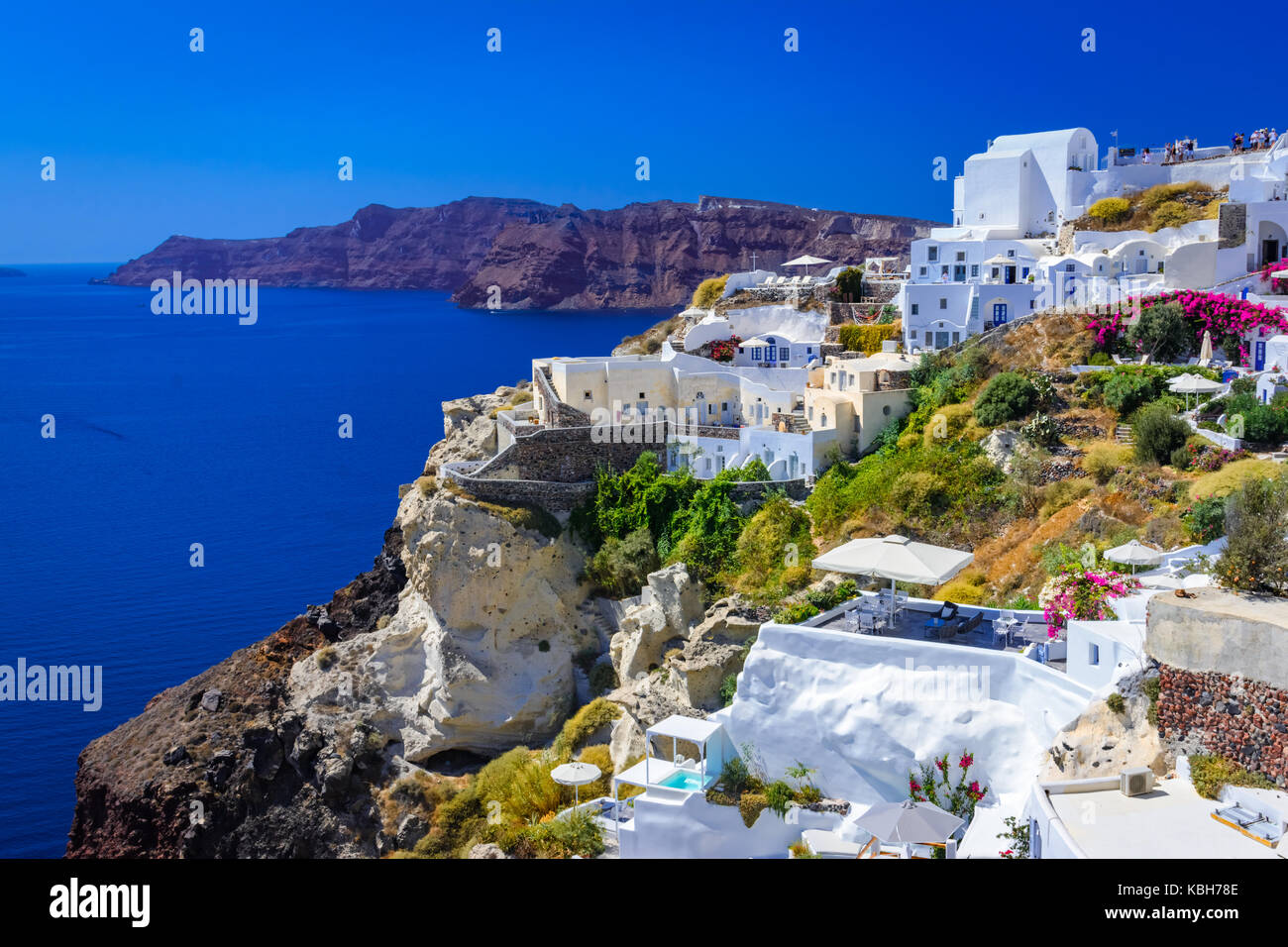 Stadt Oia, Santorini, Griechenland. Traditionelle und berühmte weisse Häuser und Kirchen mit blauen Kuppeln Stockbild