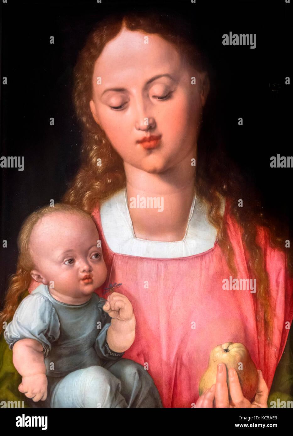 Madonna mit Kind (Madonna der Birne) von Albrecht Dürer (1471-1528), Öl auf Leinwand, 1526 Stockbild
