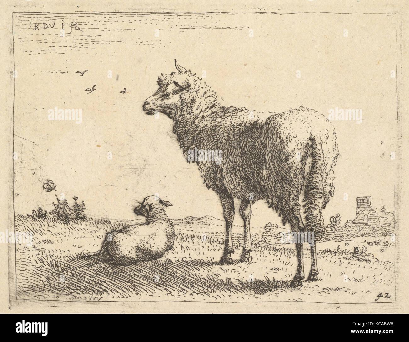 Eine ausgereifte Schafe in drei Viertel Ansicht stehen und links, daneben ein Lamm auf dem Rasen liegt, Karel Dujardin, Stockbild
