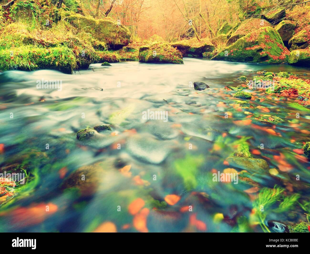 Steinerne Bank von Herbst mountain river von orange Buche Blätter abgedeckt. Frische bunte Blätter auf Stockbild
