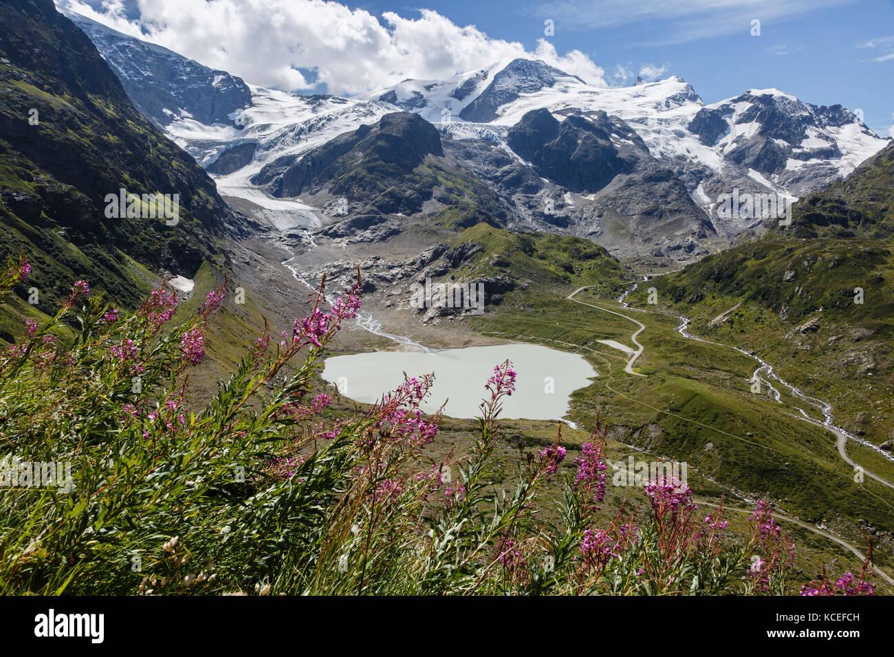 Blick von der Sustenpass, sustenhorn und der Stein Gletscher, Schweiz Stockbild