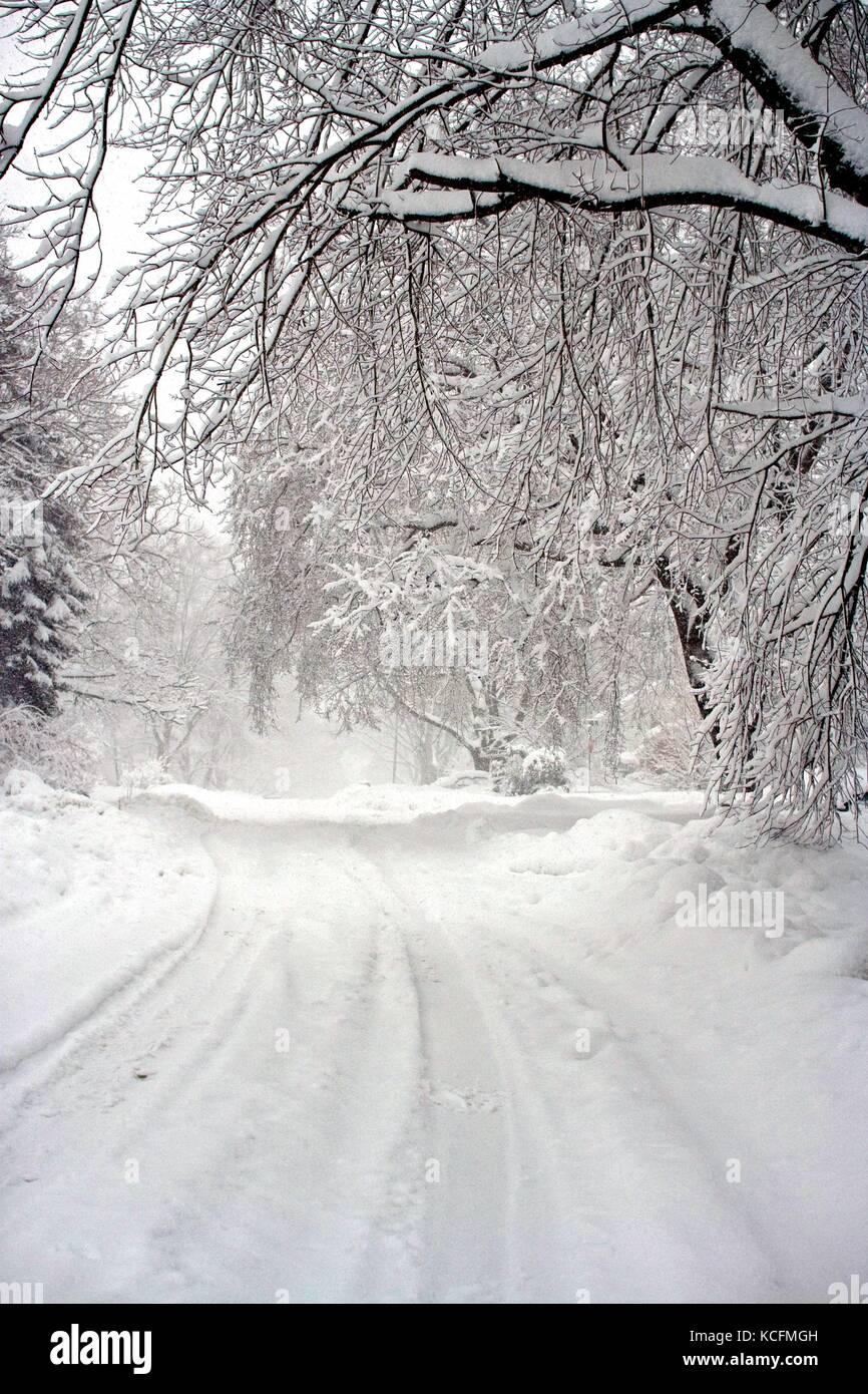 Tiefer Schnee erzeugt eine Winterlandschaft nach einem Blizzard. Stockfoto