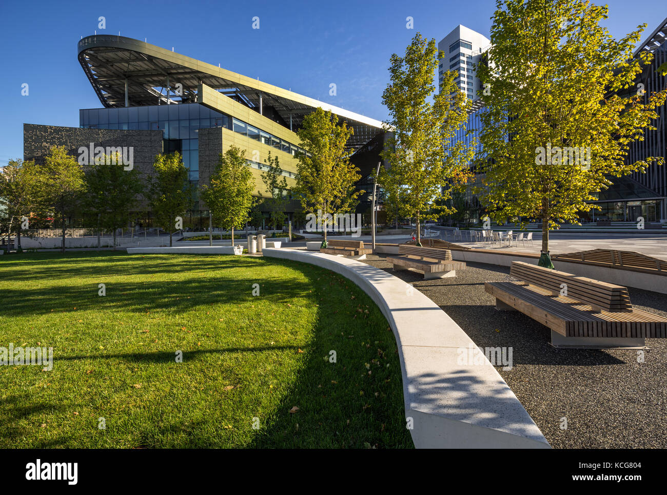 Die Cornell Tech Campus auf Roosevelt Island im Sommer. New York City Stockbild