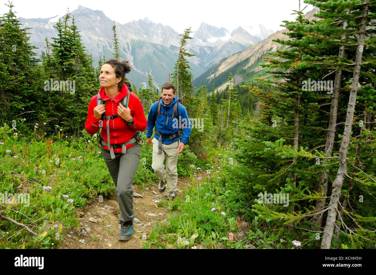 Wandern am Eisfall Lodge nördlich von Golden, British Columbia. Stockbild
