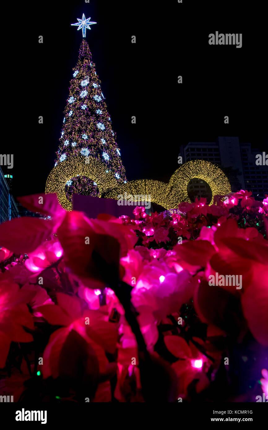 Xmas Deko Weihnachtsbaum.Beleuchtete Lila Blüte Unter Weihnachtsbaum Draußen In Der Nacht