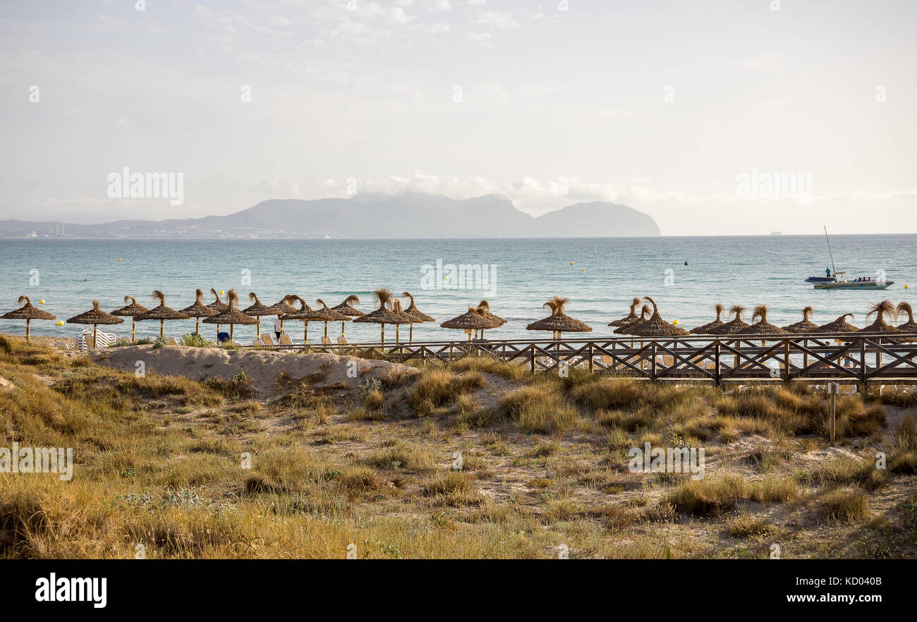 Blick auf die Bucht von Alcudia vom frühen Morgen Can Picafort, Mallorca Stockbild
