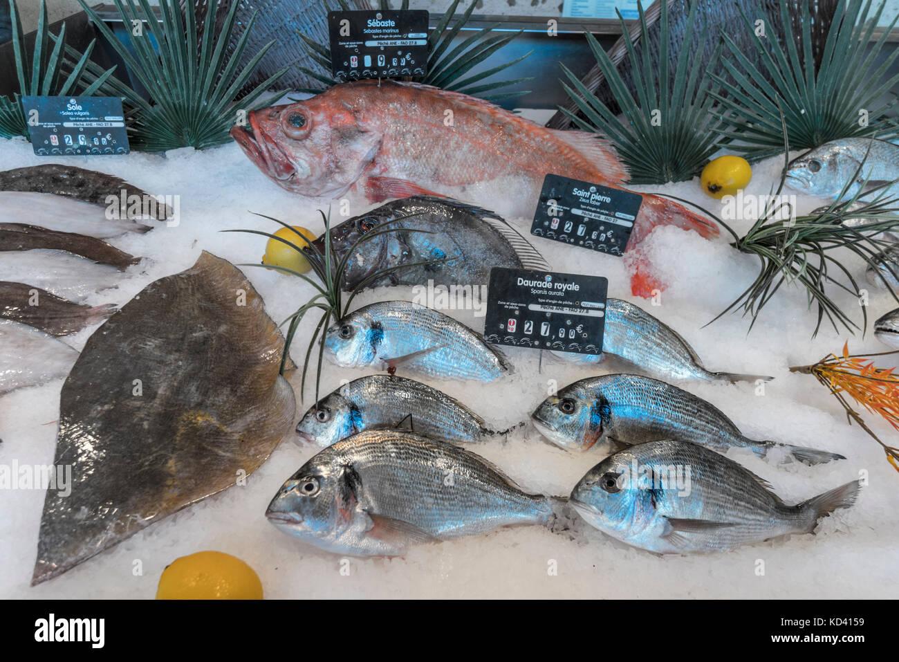 Fischmarkt, Fruits de Mer, Ile de Re, Nouvelle - Aquitaine, Französisch westcoast, Frankreich, Stockbild