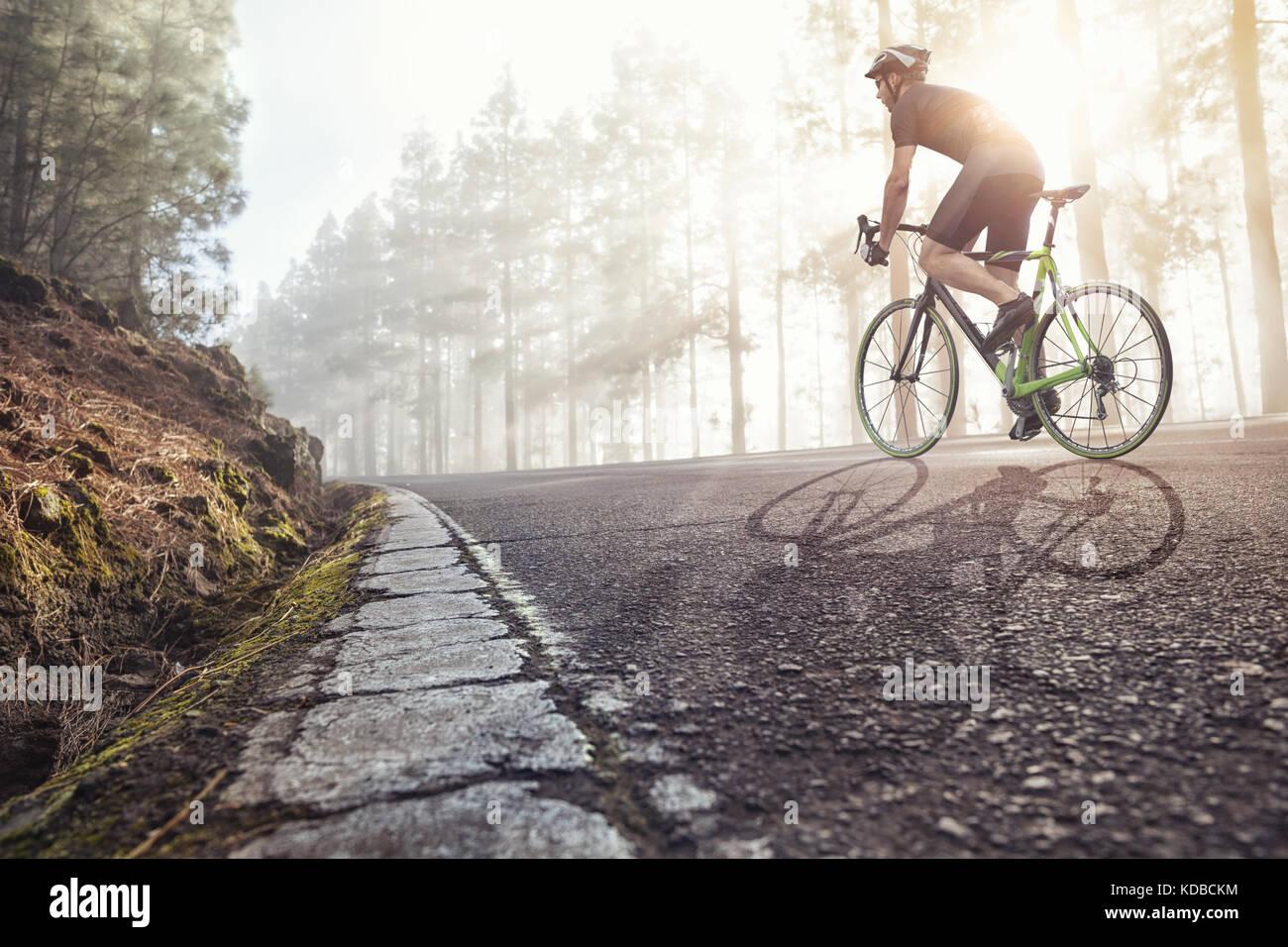 Radfahrer auf der Straße in einer nebligen Wald Stockbild