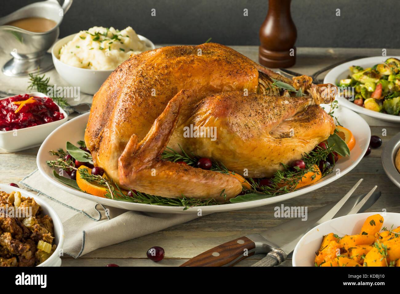 Charmant Färbung Thanksgiving Seiten Zeitgenössisch - Malvorlagen ...