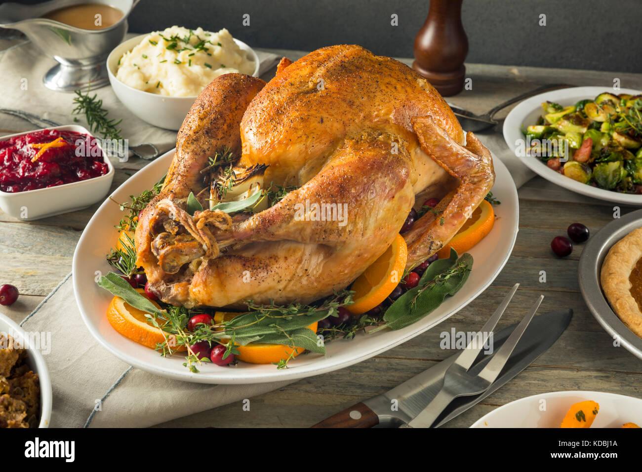 Organische freie Strecke hausgemachte thanksgiving Truthahn mit Seiten Stockfoto