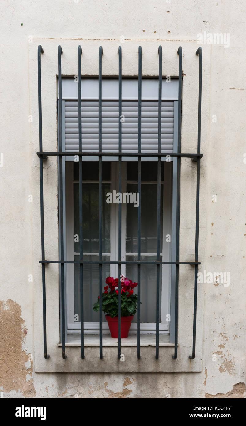 Ein Fenster Mit Metal Bars Und Einem Vergossenen Geranium Pflanzen