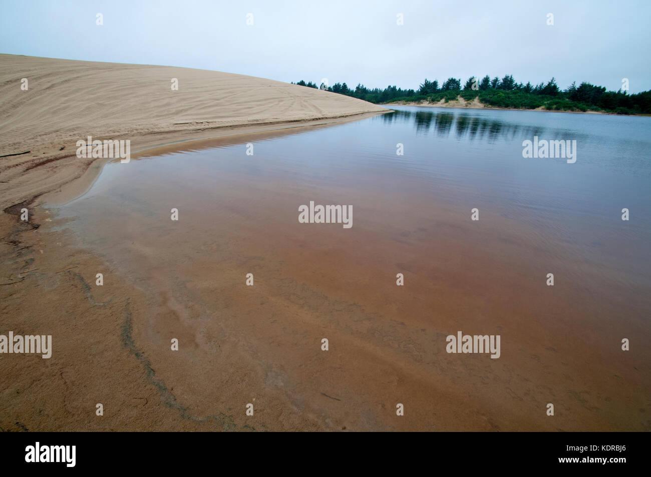 Natürliche Wasser Teich auf den Sanddünen, Florence, Oregon Stockbild