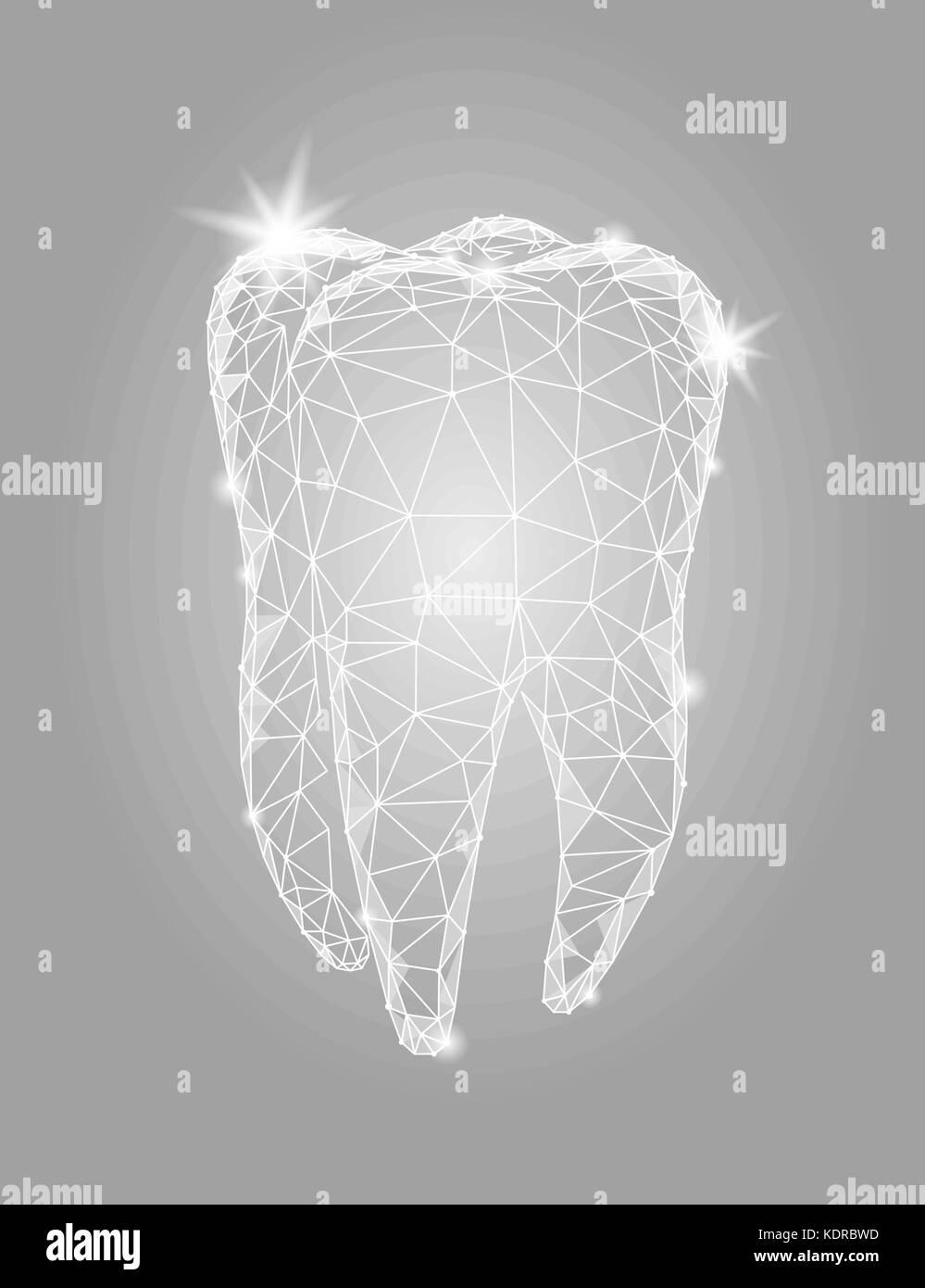 Illustration Human Tooth Structure Stockfotos & Illustration Human ...