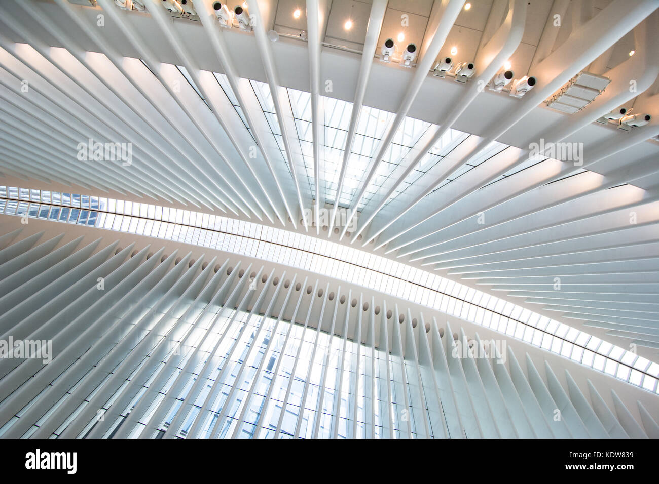 Die beeindruckende Architektur des Oculus am World Trade Center Verkehrsknotenpunkt in New York City, United States Stockbild