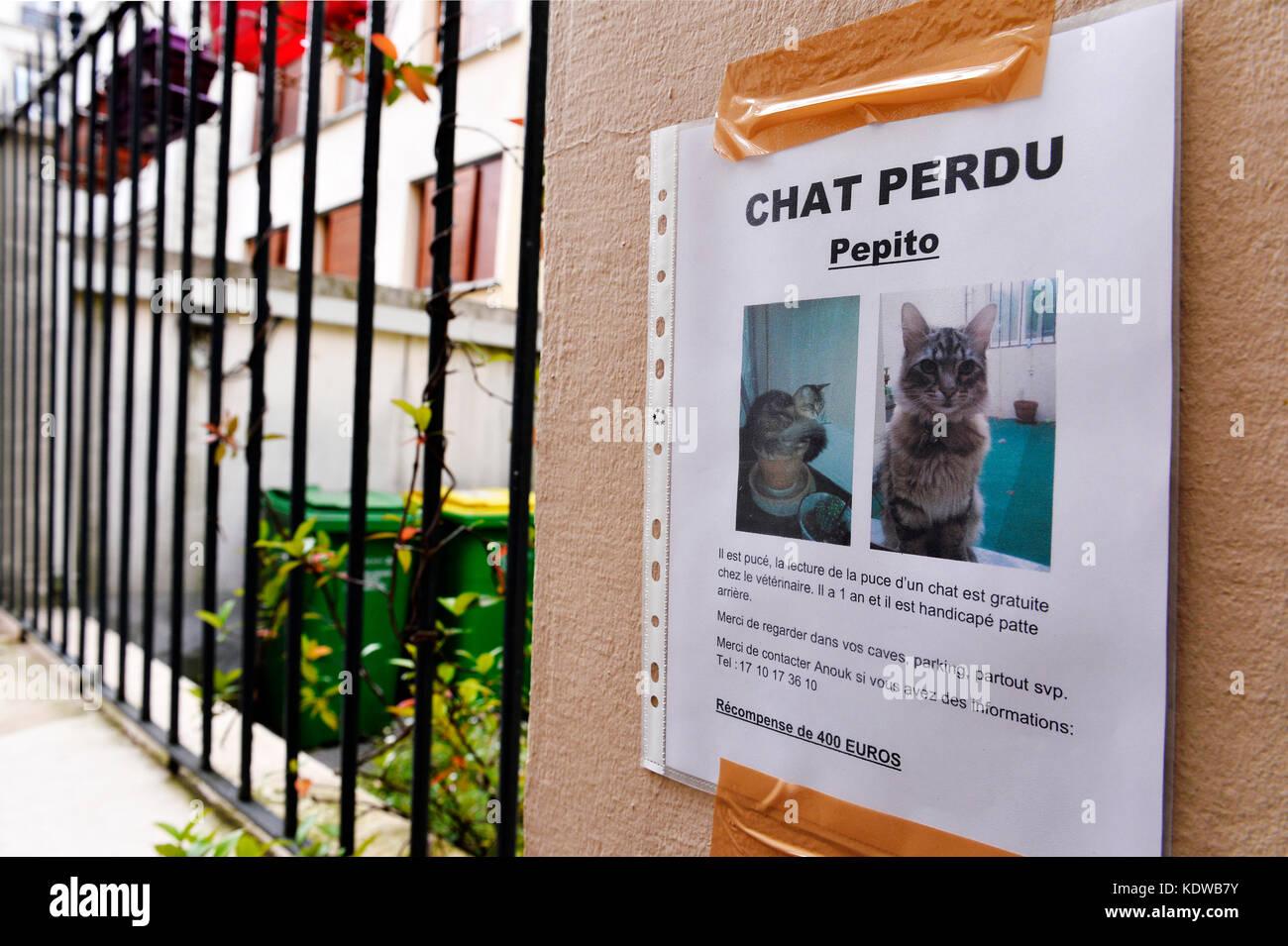 Verloren cat Poster, Montmartre - Paris Stockbild