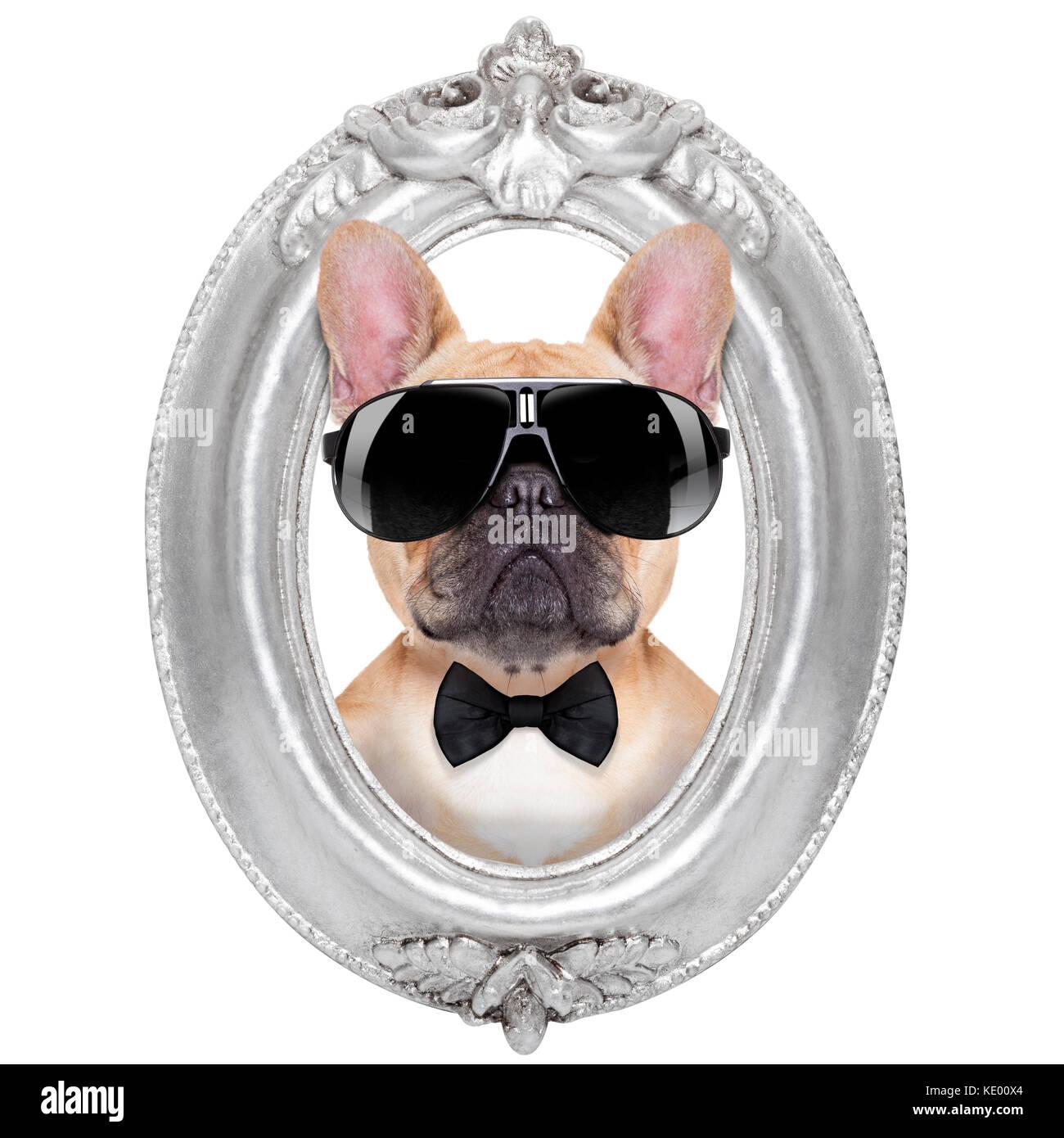 Ungewöhnlich Hund Rahmen Bilder - Rahmen Ideen - markjohnsonshow.info